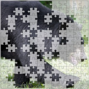 2016-Jigsaw-056